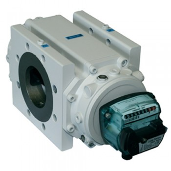 Delta Rotary Gas Meter